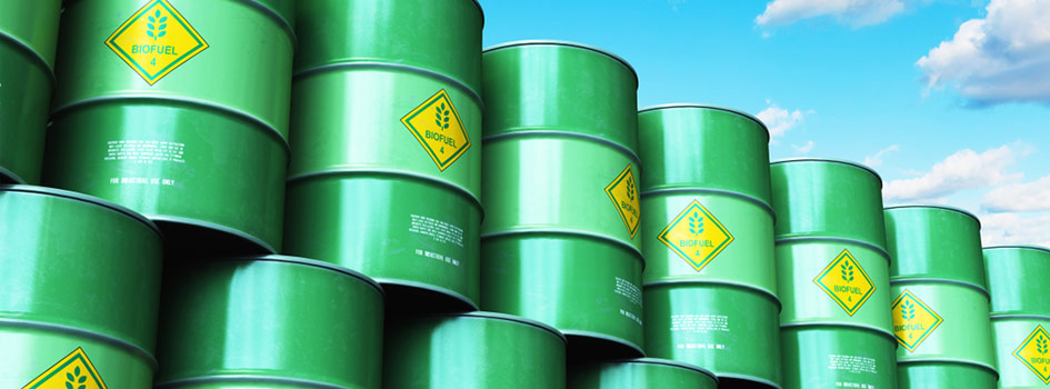 renewable biofuel examples